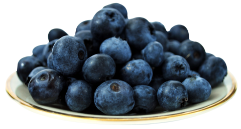 Table of Blueberry PNG