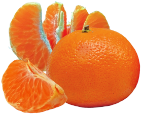 Tangerines and Slices PNG