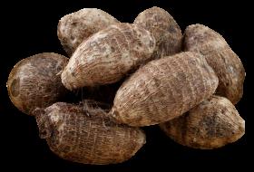 Taro PNG