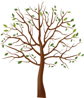 Little Leaves Tree PNG