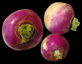 Turnip PNG