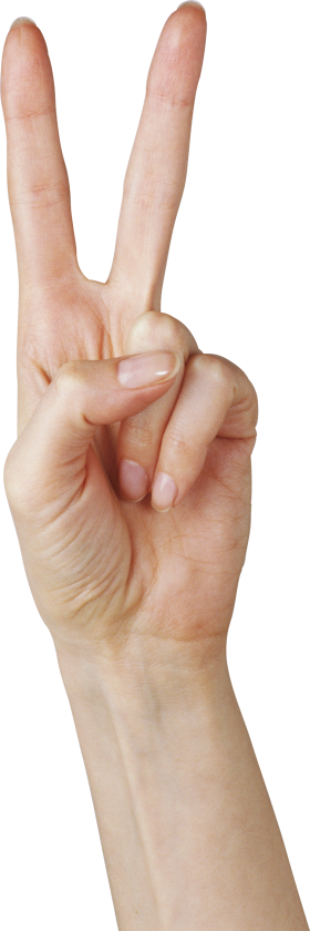 Two Finger Hand PNG