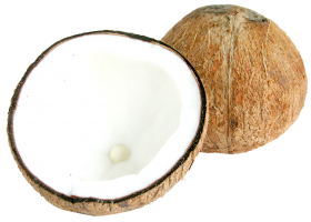 Two Half  Coconut PNG