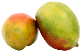 Two Mango PNG