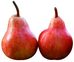 Two Pear Fruits PNG