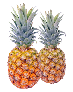 Two Pineapple PNG