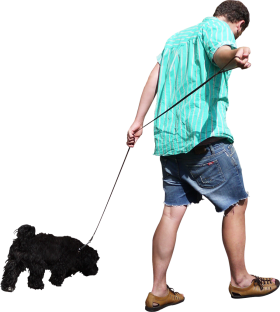 Walking The Dog PNG