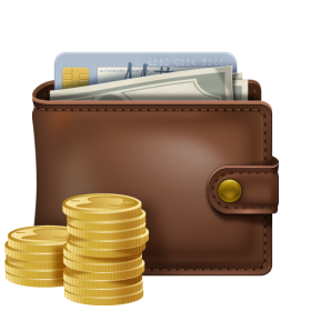 Wallet With Coins PNG