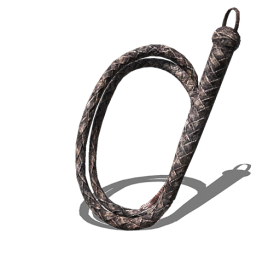 Whip PNG