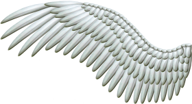 White Wings PNG