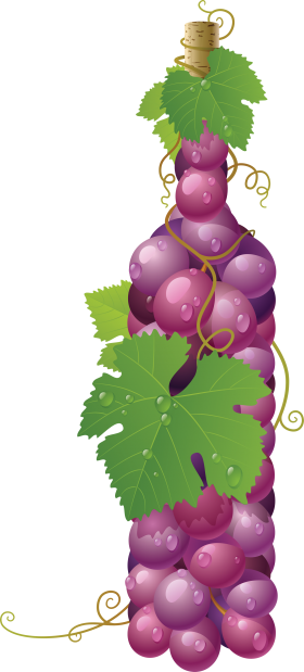 Winebottle out of Grapes PNG