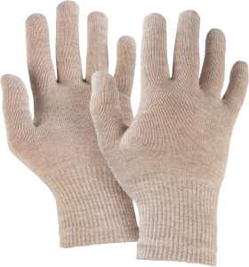 Winter Gloves PNG