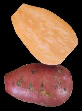 Yam PNG