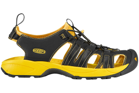 Yellow Black Sandal PNG