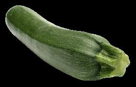 Zucchini PNG
