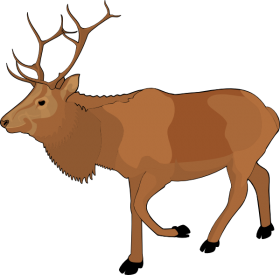 Standing Moose Clipart PNG