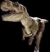 T-Rex running PNG