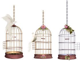 Three Cages PNG
