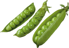 Three Pods with Peas PNG