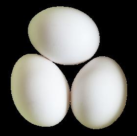 Three White Eggs PNG