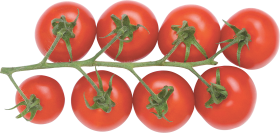 Tomatoes PNG