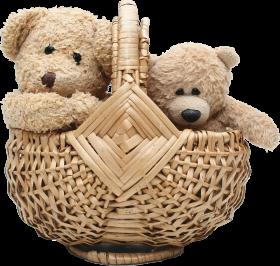Two Teddy Bear In Basket PNG