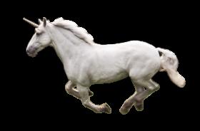 Unicorno PNG