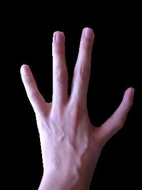 4 Fingered Hand