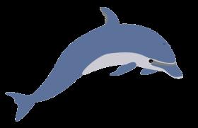 Cute Clipart Dolphin