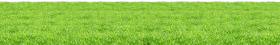 Grass Surface