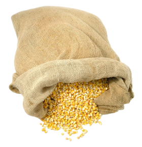 Bag of Maize