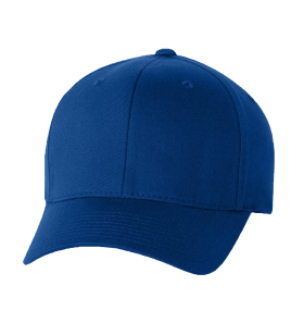 Biz Cloth Twill Cap
