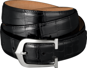 Black Belt With Stylish Buckles