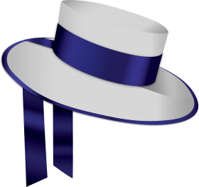 Blue White Hat