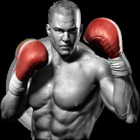 Boxing Glove  Render