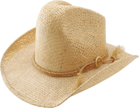 Brown Cow Boy's Hat