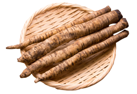 Burdock Root In Bowl