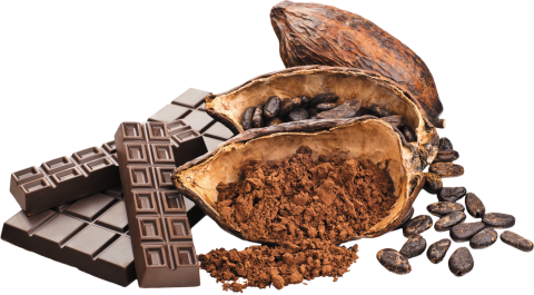 Cacao with Chocolate
