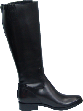 Cole Haan Simona Tall Boot (Women)