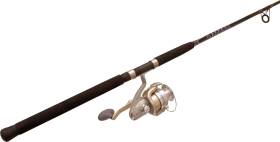 Fishing Rod