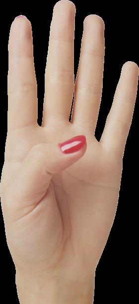 Four Finger Hand