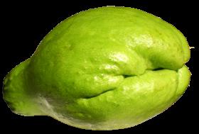 Fresh Chayote