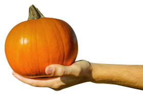 Hand Holding Orange Pumpkin