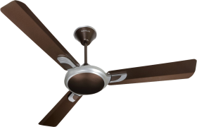 Indoor Ceiling Fan