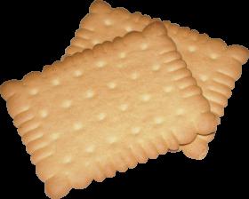 Leipniz Cookie