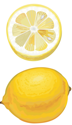 Lemon drawing cut