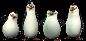 Madagascar Penguins