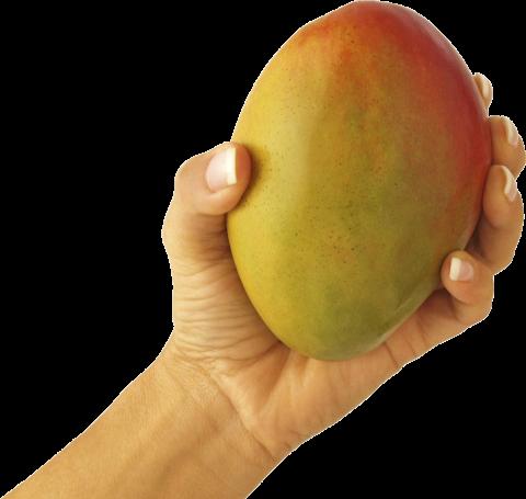 Mango with Hand