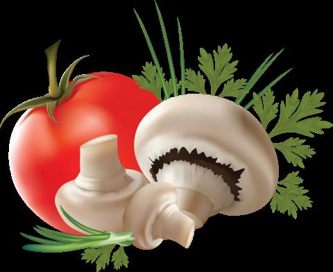 Mushroom with Tomato