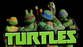 Ninja Tutles  Logo